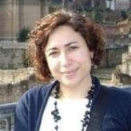 M. Carmen Villarino Pardo